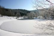 Park in Westfeld